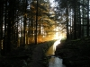 sunset-on-leat-734ff64adfe9e39094153b63f66ae24f1307098a