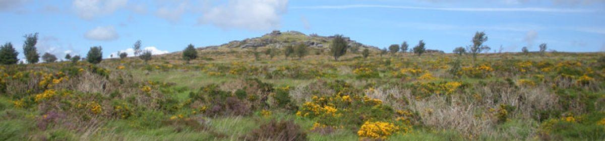 Dartmoor Geocaching