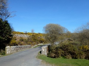 Park at Saddle Bridge or Combestone Tor