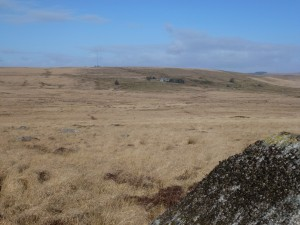 Fox Tor Mire aka Great Grimpen Mire